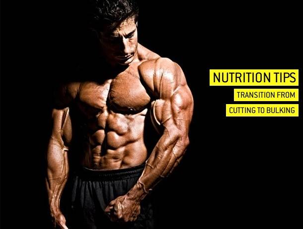Nutrition Tips How To Make The Transition From A Cutting Phase To A Lean Mass Phase Simplyshredded Com